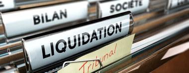 Procédure de liquidation judiciaire :