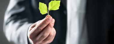 Risques environnementaux :