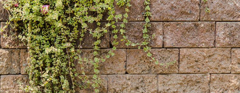 Rehaussement du mur mitoyen :