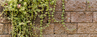 Rehaussement du mur mitoyen